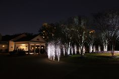 Our silver fountains look beautiful around circular driveways.  Wedding fireworks.