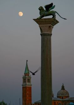 A lion perched atop a column guards Venice by the light of the moon.