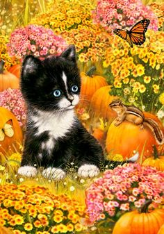 Kitten & Pumpkins - Large Size 28 Inch X 40 Inch Decorative Flag Belle Rose Collection http://www.amazon.com/dp/B0056PFC2U/ref=cm_sw_r_pi_dp_e9GYvb00ABNGY