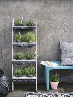 KARWEI | Deze verticale kruidentuin heeft niet veel ruimte nodig en je kunt 'm eenvoudig zelf maken #tuininspiratie #karwei