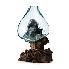 A sculptural bowl of flowing, hand blown glass is draped over the gnarled root of a gamal tree.