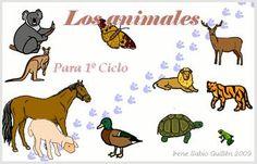 El blog de Maricarmen e Isabel.: Los animales. Animales domésticos. Animales vertebrados