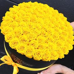 Btw u would look good but we can't maybe later when we can do this u could hold the phone and u stand on a chair 😂😂😂😂😂😂! No selfie ! Just ppl take pics better 😂 Beautiful Rose Flowers, Love Flowers, Million Roses, Happy Birthday Flower, Flower Arrangements Simple, Rosa Rose, Luxury Flowers, Flower Boxes, Mellow Yellow