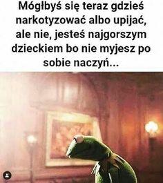 Kermit, Wtf Funny, Hilarious, Polish Memes, Sad Texts, Funny Mems, I Cant Even, I Don T Know, Best Memes