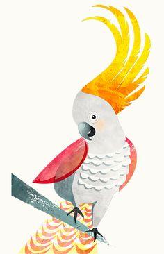 Coy cockatoo illustration for wine labels - Leanne Bock. Australian / art / design / animals / bird.