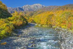 紅葉の越後駒ヶ岳と北ノ又川 (c)NOBUAKI SUMIDA/SEBUN PHOTO