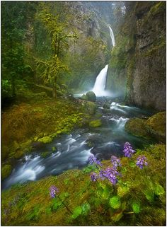 Columbia River Gorge Waterfall, Oregon by Marc Adamus Columbia River Gorge, All Nature, Amazing Nature, Beautiful Waterfalls, Beautiful Landscapes, Beautiful World, Beautiful Places, Foto Art, Land Scape