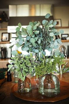 Use old Patron bottles of various sizes to hold assorted foraged herbs of the same color scheme // From Entertaining with Aida Mollenkamp | Photos by Denise Crew for Camille Styles