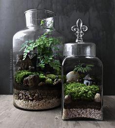 Woodland Terrarium Garden with Miniature House and Fleur de
