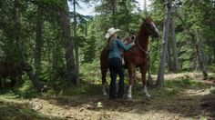 Season 09 > Episode Over and Out Heartland Season 9, Amber Marshall, Best Shows Ever, Amy, Horses, Seasons, Seasons Of The Year, Horse