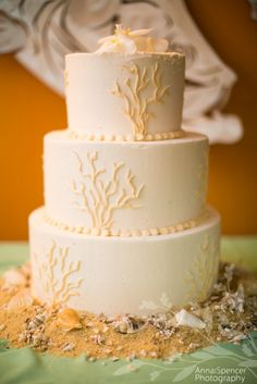 Anna and Spencer Photography , Atlanta Documentary Wedding Photographers . Coral / Beach Themed Wedding Cake in Belize .