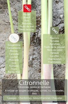 Tous les ingrédients qui s'harmonisent avec la citronnelle Spices And Herbs, Fresh Herbs, Herb Seeds, Aromatic Herbs, Seasoning Mixes, Vegetable Recipes, Food Hacks, Spice Things Up, Cooking Tips