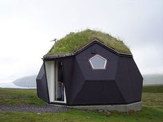 Beautiful black geodesic house with a green roof. Offbeat points +3!