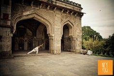 Manjeet Mathur in Lodi Gardens Delhi  (c) HEY YOGI   Creating awesome marketing material for the holistic community and beyond.  www.hey-yogi.com  #yogaphotography #photography #asana