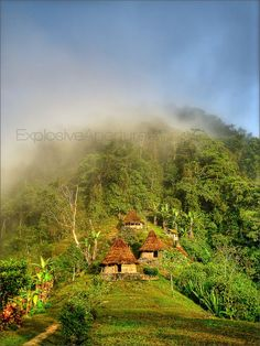 Trek to the Lost City (Ciudad Perdida) - Explosive Aperture Visit Colombia, Colombia Travel, Sierra Nevada, Places To Travel, Places To Visit, Colombia South America, Lost City, Cool Landscapes, Viajes