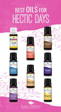 Hectic Holidays mean focusing on winter wellness, and essential oils can help maintain your peace of mind. Plant Therapy has the oils you need to stay calm! Plant Therapy Essential Oils, Are Essential Oils Safe, Vanilla Essential Oil, Essential Oil Uses, Natural Essential Oils, Essential Oil Diffuser, Tag Design, Balancing Work And Family, Aromatherapy Oils