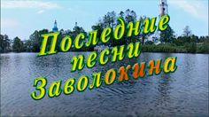 """""""Играй, гармонь!"""" Последние песни Заволокина. часть 2-я. ©2013"""