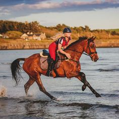 #weekendfun with Benny in the waves looking fantastic in the Horze Monaco Saddle Pad and matching bandages _____________________ #horze #equestrian #itsalifestyle #beautiful #horses #horsegirl #lovehorses #horselove #horseriding #pony #horsesofinstagram #dressage #englishriding #eventing #showseason #hest #pferd #hast #paard #cheval #caballo #cavallo #hevonen #happiness #horse