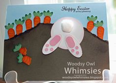 Woodsy Owl's Whimsical World