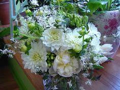Peonies, ,dahlias, jasmine, arabicum.