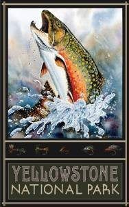 Trout fishing art makes excellent fly fishing gifts for anyone on your gift list. Fishing art can be such things as vintage fishing posters, paintings of the different species of trout, paintings of trout flies, antique metal wall decor, paintings of trou Fly Fishing Gifts, Best Fishing, Fishing Rod, Fishing Pliers, Ice Fishing, Fishing Bobbers, Fishing Chair, Fishing Trips, Fishing Stuff