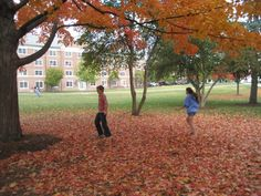 Gettysburg College, Alma Mater, Growing Up, Places, Lugares