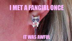 Grumpy Cat  Internet meme Clinging earrings  Handmade Geeky front and back  kawaii two part post earrings on Etsy, $7.95