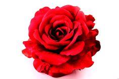 Red Rose Bridal Flower clip  Red Rose Bridal by ChildrensCandyKC