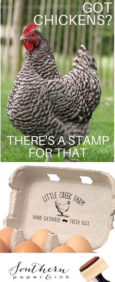 A Chicken Egg Carton Stamp is a great way to customize your egg cartons, signs and gift tags. Enjoy free shipping now at Southern Paper and Ink. #eggcarton #customeggcarton #raisingchickens #backyardchickens