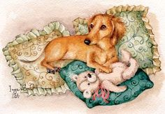 Dachshund Clube - Inga Izmaylovs Cat 2, Dog Cat, Crusoe The Celebrity Dachshund, Dog Necklace, Dachshund Love, Old Postcards, Dog Love, Terrier, Dinosaur Stuffed Animal