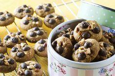 עוגיות מייפל־פקאן ושוקולד־צ'יפס - מתכוני השף הלבןhttp://www.chef-lavan.co.il/item/11401