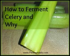 Making fermented celery is a pretty easy task. It only takes about minutes of your time, and 5 - 7 days of fermenting. Fermentation Recipes, Canning Recipes, Raw Food Recipes, Vegetable Recipes, Vegetable Dishes, Healthy Recipes, Best Probiotic, Probiotic Foods, Fermented Foods