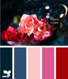 This is the color palette I've chosen for my blog! The pinks and dark reds and blues make up Floral Tones by Seeds. Comment and let me know what you think!