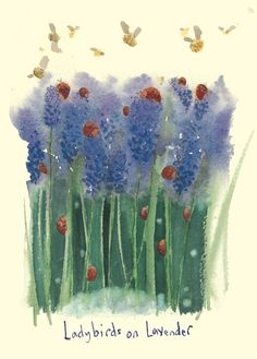 IF108 Ladybirds on Lavender - A Two Bad Mice Card by Fran Evans