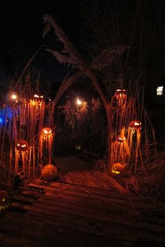 Different way to stage pumpkins..freaking awesome!