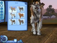 29 Weird Things that Happened to Sims <3