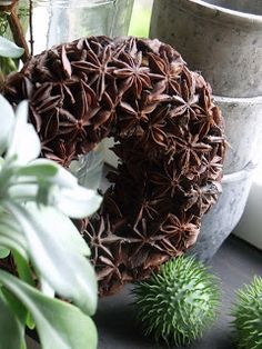 star anise wreath - love