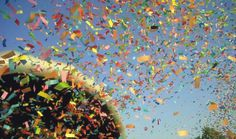 Outdoor Confetti Cannon, Confetti, Plants, Painting, Outdoor, Art, Outdoors, Art Background, Painting Art