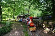 Märchenparadies Heidelberg:  Die Eisenbahn Germany, Around The Worlds, Train, House Styles, Beautiful Places, Heidelberg, Paradise, Road Trip Destinations, Travel Advice