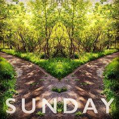 Some days I don't know which path to take the Path of Righteousness or the Path to Redemption. Perhaps it's the same path just a different route.  #SuperSunday #motivation #motivated #motivated #motivateyourself #inspiration #inspire #inspired #inspirational #sunday #sundays #sundaymorning #sundayfunday #minnstagramers #minnstagrammers #minstagram #onlyinmn