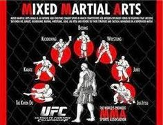 We of course all know about the MMA explosion that has swept through the country and around the world over the last few years. The UFC and MMA are loved by people of both genders and of all ages. Martial Arts Styles, Martial Arts Techniques, Boxing Techniques, Joseph Pilates, Aikido, Wing Chun, Muay Thai, Kung Fu, Karate