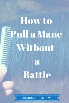 Mane Pulling - The Peaceful Way. Learn how to pull a mane without a battle using the technique I'm sharing. This is information every equestrian should know.