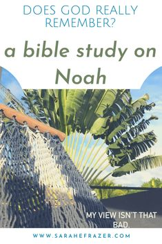 Celebrate God's faithfulness with a Bible study on Noah. This Bible study for women is a great way to see God's faithfulness in Scripture and reflect on God's promises to His children. || Sarah E. Frazer
