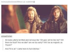 The Hobbit - Fili and Kili XD I'm so sorry about the cussing