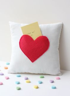 adorable secret pouch pillow