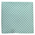 Iron Gate - Spearmint (Cotton Skinny) | Ties, Bow Ties, and Pocket Squares | The Tie Bar. Cotton tie in 3 widths $15. Matching pocket square $8.