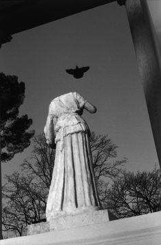Josef Koudelka - Rome. 2000. Gardens of the Villa Borghese.