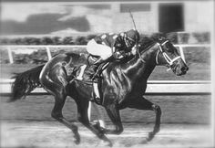 JULY 10, 1982 We hardly knew her, before she was gone. Her name was LANDALUCE. Landaluce, a two-year-old daughter of Seattle Slew from his first crop, won the Hollywood Lassie Stakes by 21 lengths under jockey Laffit Pincay, Jr. Calling it a 15-length margin, the announcer was so struck with amazement that he got it wrong. It remains the largest winning margin ever by a two-year-old at Hollywood Park. She was posthumously awarded Two-Year-Old Female Horse of the Year.