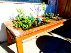 succulent box  salvaged coffee table by JKsART on Etsy, $195.00