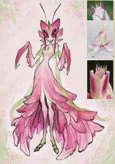 Fantasy Character Design, Character Design Inspiration, Character Art, Fantasy Creatures, Mythical Creatures, Orchid Mantis, Doll Painting, Furry Drawing, Monster Girl